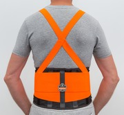 Hi Visibility  Back Support